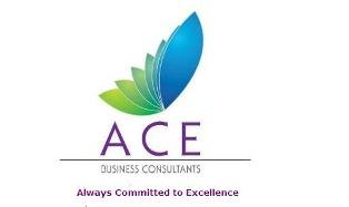 Ace Business Consultants